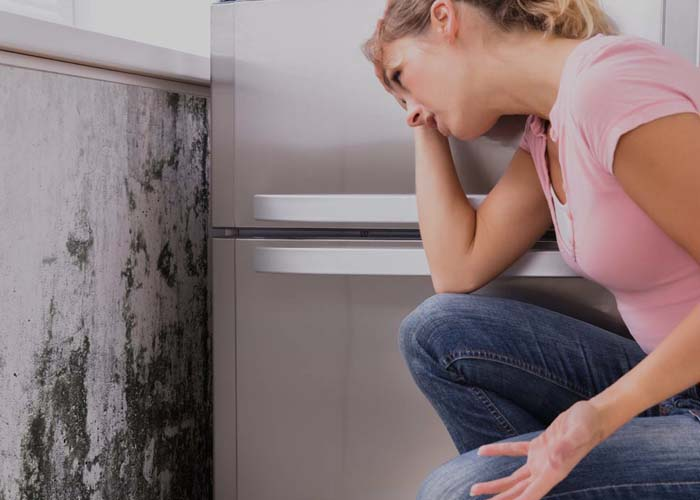 Mold Inspection and Remediation Services - Causes of Mold