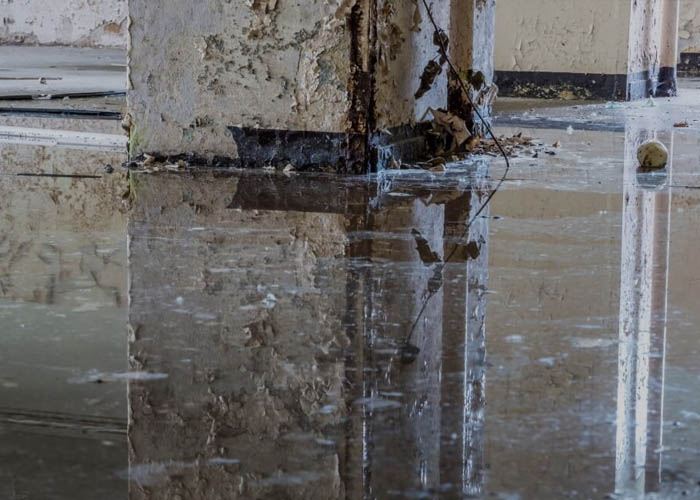 quick and reliable damage analysis services - flood damage